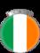 Baronne de la Cuisine Irlandaise