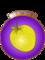 Chevalière de la Pomme