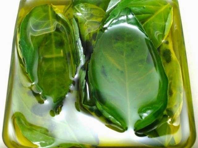 Recettes de fines herbes de 1 recette de soupe - Comment conserver du basilic ...