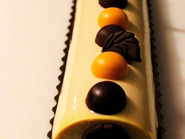 Buche de noel chocolat abricot