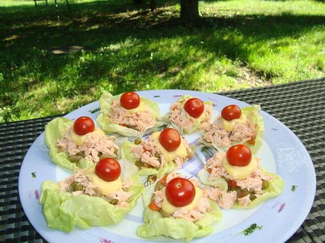 Recettes de mac doine et saumon - Salade qui ne gele pas ...