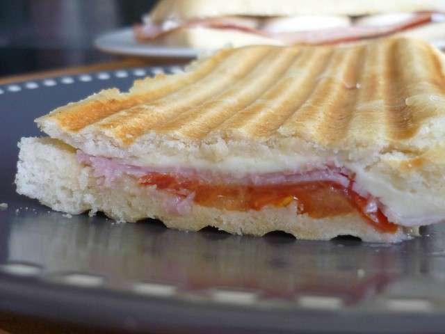 Recettes de panini et poulet - La maison du panini ...