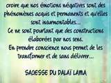 Citation Dalaï Lama 🙏