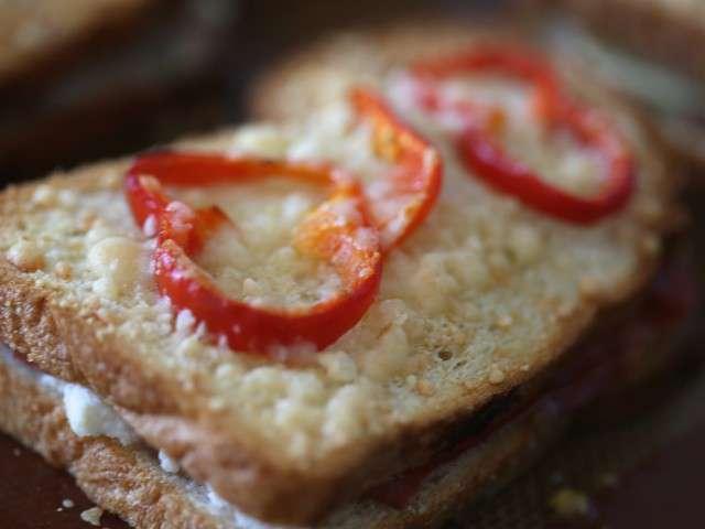 Recettes de fromage de cuisine du soleil provence italie for Soleil en cuisine