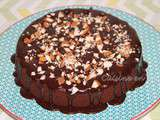 Pop cake double chocolat