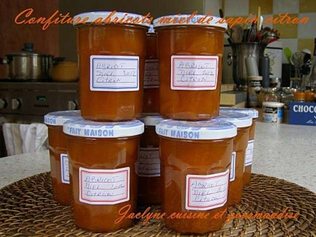 Recettes de miel et abricot 11 - Cuisine et gourmandise ...