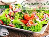 Dossier : Grandes salades version plat unique
