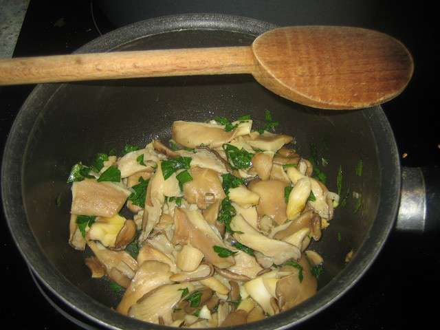 Recettes de fricass e et pleurotes - Cuisiner des pleurotes ...
