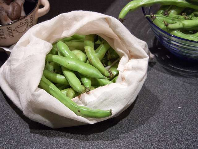 recettes de fèves fraiches
