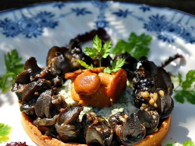 Recettes d 39 escargots de bourgogne - Cuisiner les escargots de bourgogne ...