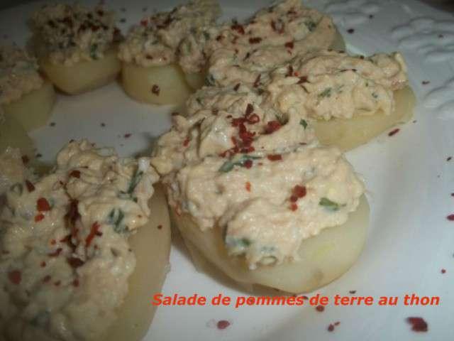 Recettes de mayonnaise 30 - Recette mayonnaise au mixeur ...