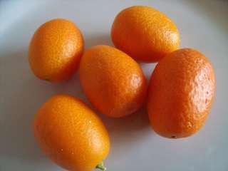 Recettes de Kumquat