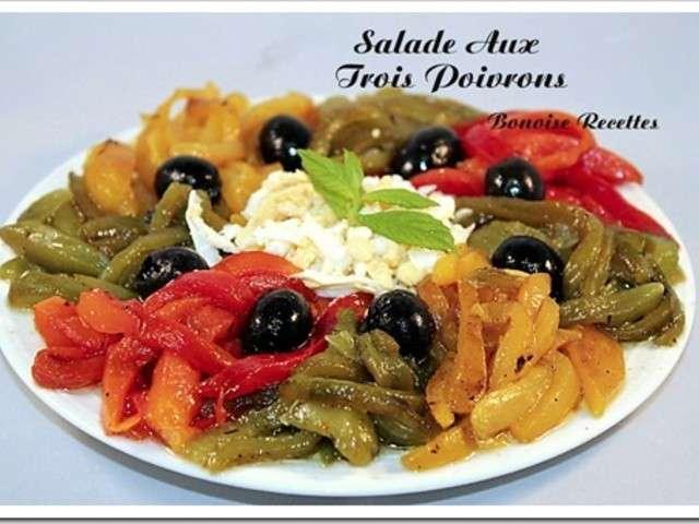 Recettes de salade de poivrons de art de cuisine de sihem for Amour de cuisine de sihem