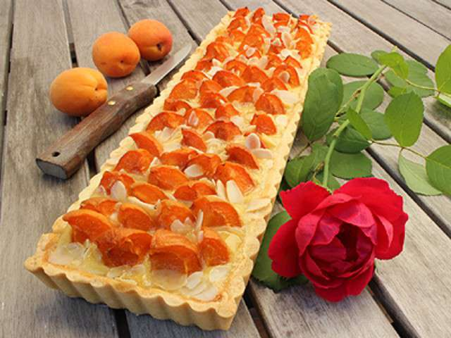 Recettes d 39 amandine et abricot 4 for 365 jours de cuisine