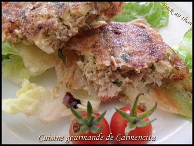 Recettes de bricks de cuisine gourmande de carmencita for Cuisine gourmande