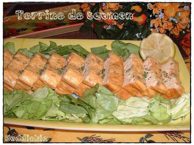 Recettes de terrine de saumon et terrines 6 for Entree rapide et legere