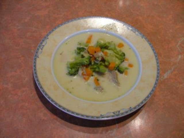 Recettes de brocolis choux fleur carottes petits pois feves estragon - Soupe de brocolis thermomix ...