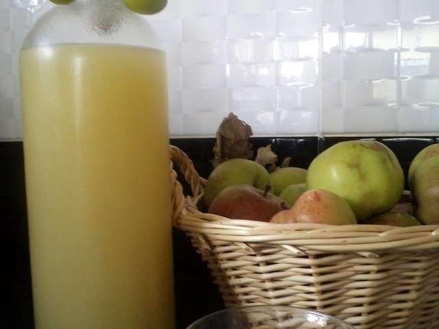 Recettes de jus et pomme 15 - Jus de pomme maison sans centrifugeuse ...