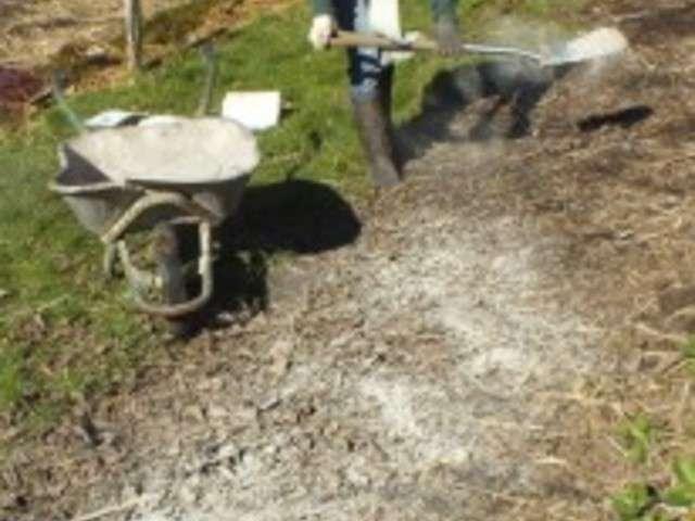 Recettes de le jardin de jenny 4 - Utilisation de la sciure de bois au jardin ...