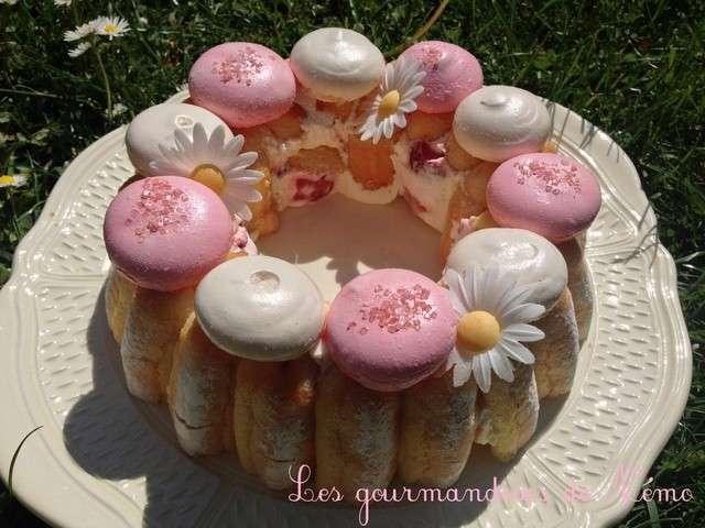 Recettes de charlotte aux fraises et cuisine rapide - Cuisine legere et rapide ...