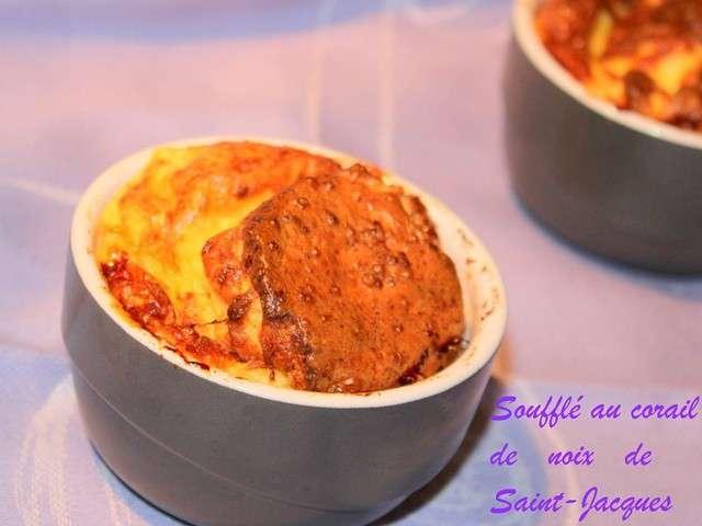 Recettes de noix de saint jacques 30 - Cuisiner le corail des coquilles saint jacques ...