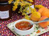 Confiture rhubarbe abricots
