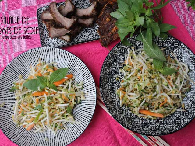 Recettes de soja et salades - Cuisiner les germes de soja ...