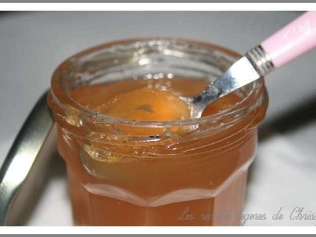 Les meilleures recettes de gel e et pomme - Gelee de pommes avec extracteur ...