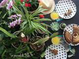 Planty Table Setting / Planty Appétit Tasty Jungle / Tropical Food Urban Jungle Bloggers May 2016