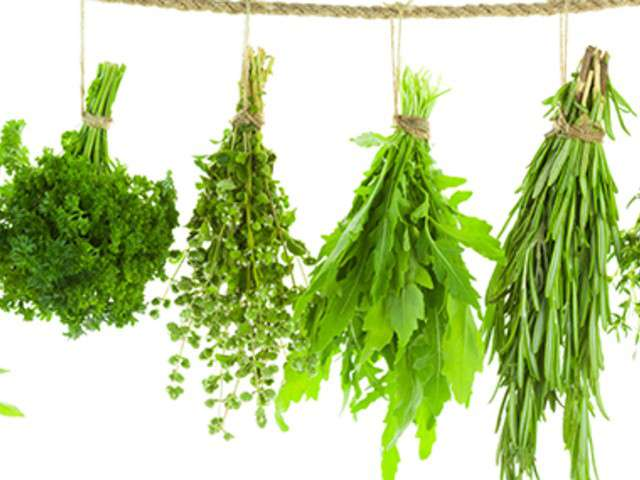 Recettes de bouquet garni - Bouquet garni en cuisine ...