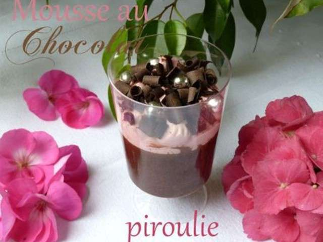 Recettes de mousse au chocolat de p tisseries et gourmandises for Mousse au chocolat pierre herme