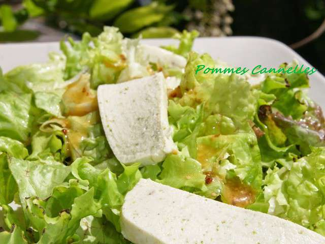 Recettes de salade verte et ail - Quand repiquer les salades ...