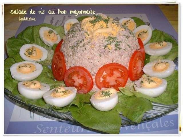 recettes de salade de riz de saveurs et cuisine. Black Bedroom Furniture Sets. Home Design Ideas