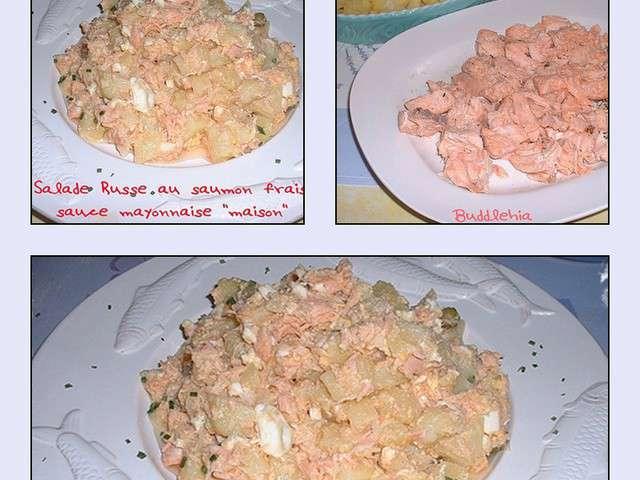 Recettes de mayonnaise et saumon - Recette mayonnaise au mixeur ...