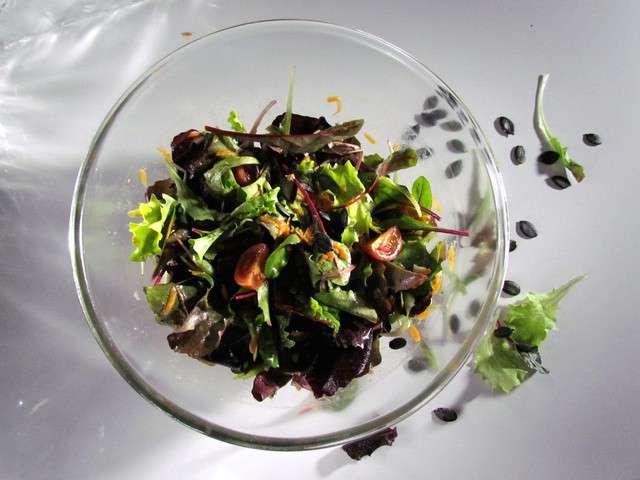 Recettes de salade verte et vinaigrette - Recette salade verte ...