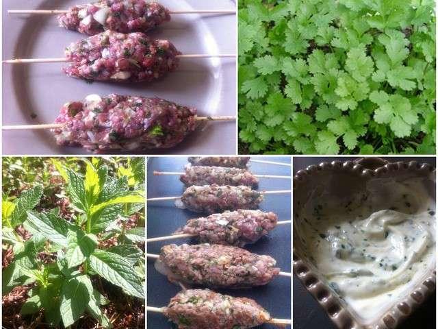 Les meilleures recettes de kefta et yaourt for Tout les cuisine