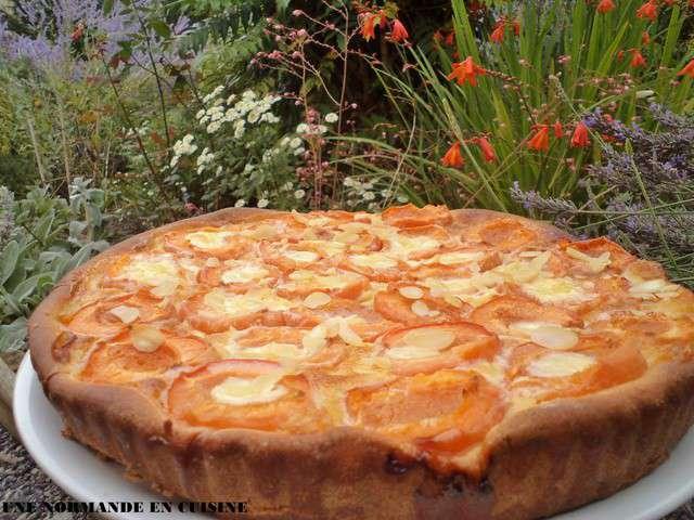 Recettes D 39 Abricot De Une Normande En Cuisine