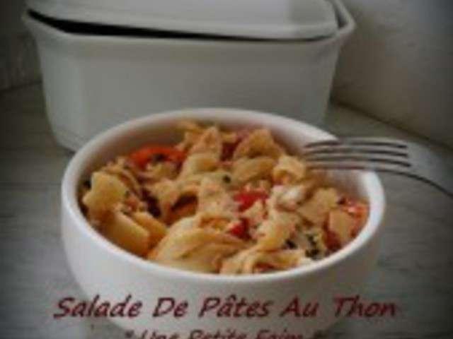 recettes de salade de pates au thon de une petite faim. Black Bedroom Furniture Sets. Home Design Ideas
