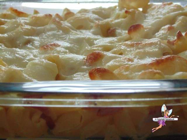 Recettes de gratin de pates et cuisine rapide - Gratin de pates facile ...